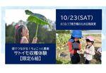 【埼玉・美園】畑でつながる!ちょこっと農業~サトイモ収穫体験~