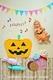 【表参道駅徒歩3分】★赤ちゃんの写真を可愛く残す★おひるねアート撮影会♪