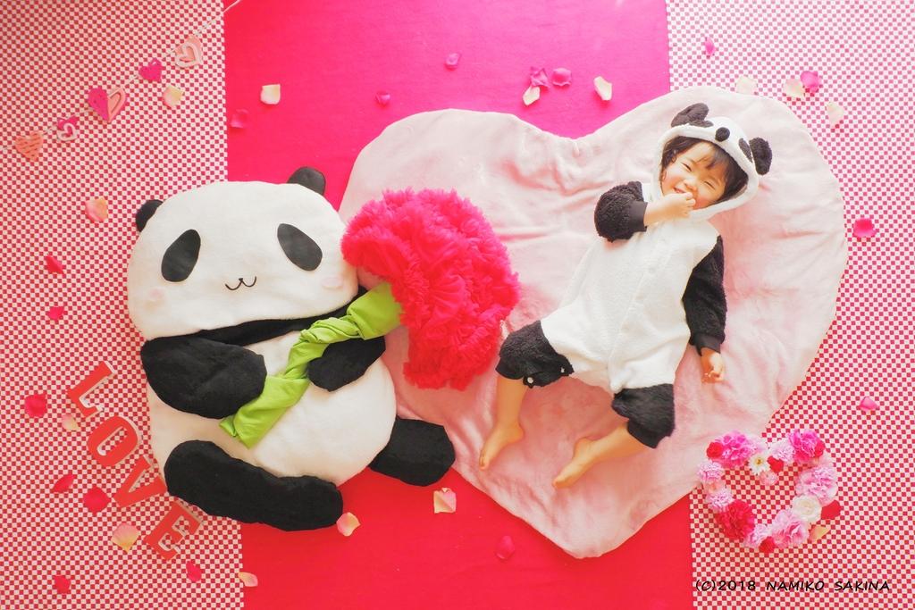 「Dear Mom~愛を込めて~」。パンダにもなれます。