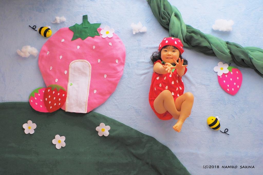 「いちごの国」。いちごとハチになって成長の記録を残しませんか?
