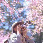 カメラマン kyon さん